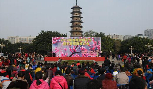 南雄市2014年梅岭梅花节正式开启